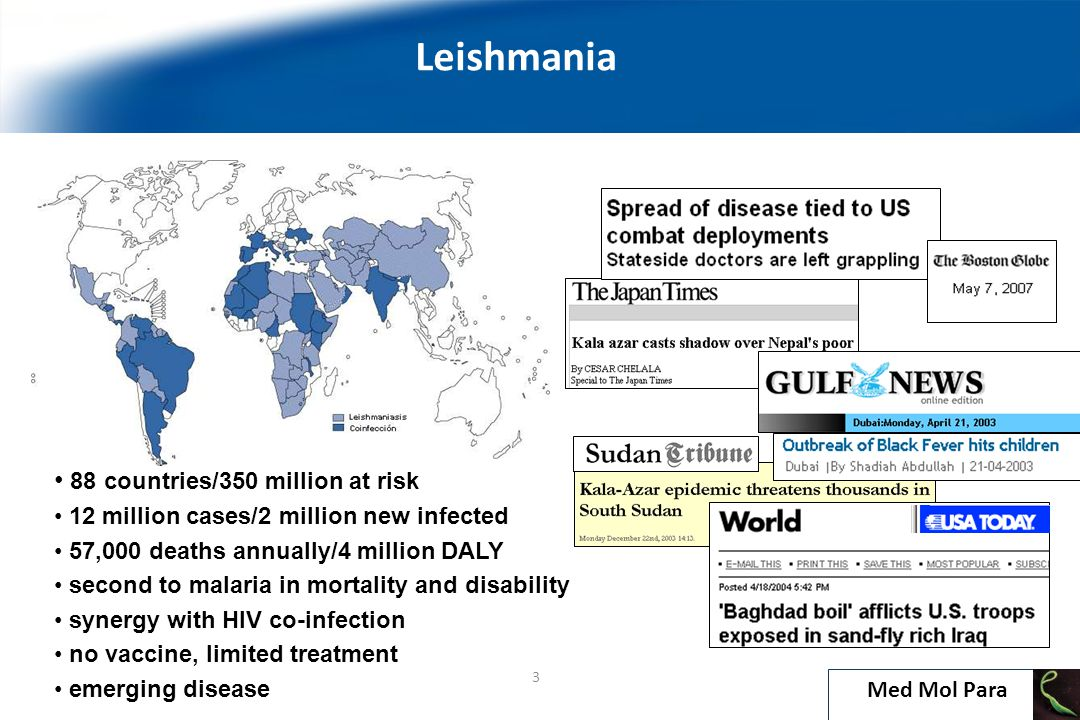 Introduction Leishmania 4 According to disease burden estimates, leishmaniasis ranks third in disease burden in disability-adjusted life years caused by neglected tropical diseases and is the second cause of parasite-related deaths after malaria Med Mol Para