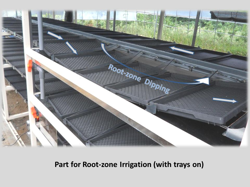 Part for Root-zone Irrigation (with trays on)