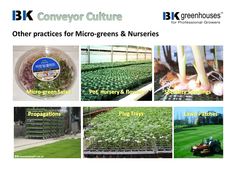 Other practices for Micro-greens & Nurseries