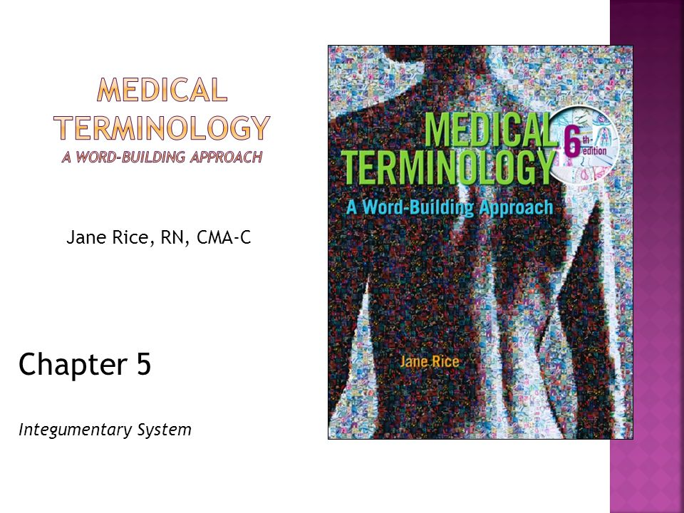 Chapter 5 Integumentary System Jane Rice, RN, CMA-C