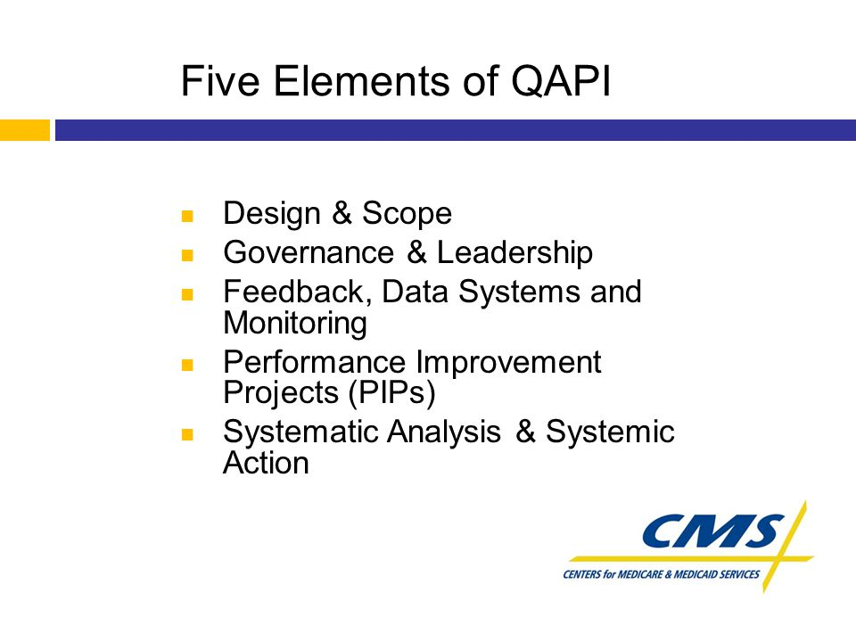 Five Elements of QAPI Design & Scope Governance & Leadership Feedback, Data Systems and Monitoring Performance Improvement Projects (PIPs) Systematic