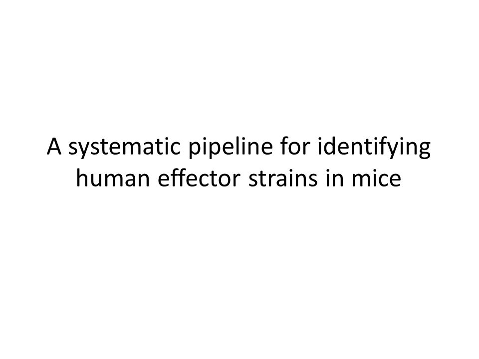 A systematic pipeline for identifying human effector strains in mice