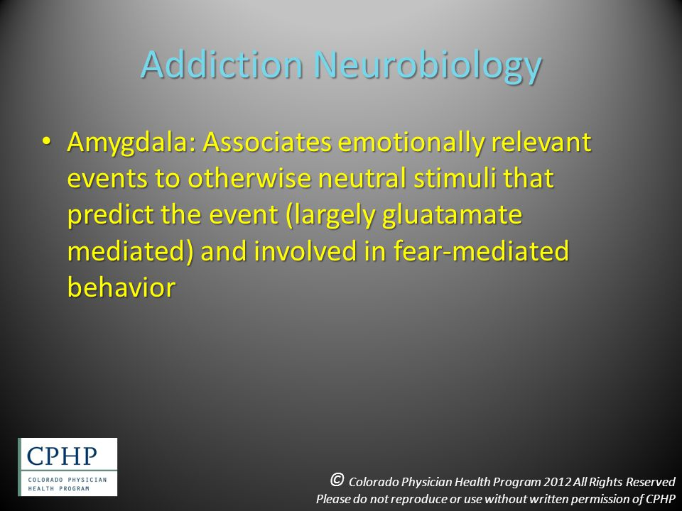 Addiction Neurobiology Amygdala: Associates emotionally relevant events to otherwise neutral stimuli that predict the event (largely gluatamate mediated) and involved in fear-mediated behavior Amygdala: Associates emotionally relevant events to otherwise neutral stimuli that predict the event (largely gluatamate mediated) and involved in fear-mediated behavior © Colorado Physician Health Program 2012 All Rights Reserved Please do not reproduce or use without written permission of CPHP