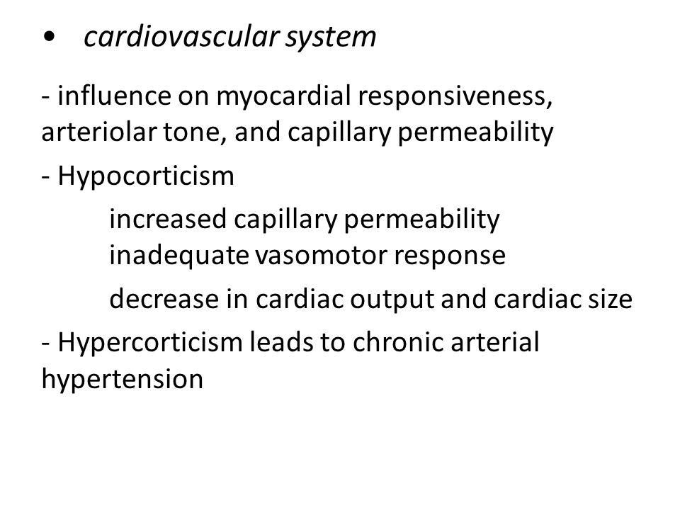 cardiovascular system - influence on myocardial responsiveness, arteriolar tone, and capillary permeability - Hypocorticism increased capillary permeability inadequate vasomotor response decrease in cardiac output and cardiac size - Hypercorticism leads to chronic arterial hypertension
