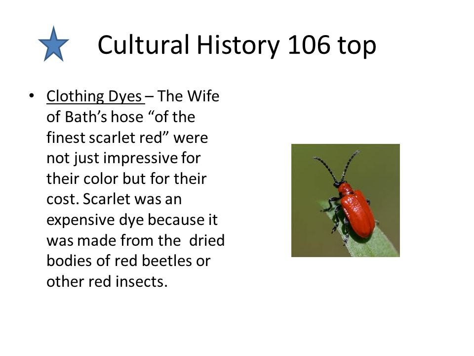 """Cultural History 106 top Clothing Dyes – The Wife of Bath's hose """"of the finest scarlet red"""" were not just impressive for their color but for their co"""