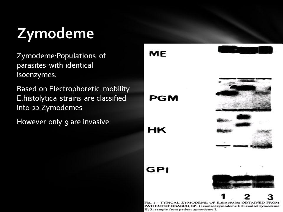 Zymodeme Zymodeme:Populations of parasites with identical isoenzymes.