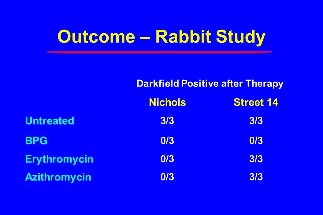Darkfield Positive after Therapy NicholsStreet 14 Untreated 3/3 BPG 0/3 Erythromycin 0/33/3 Azithromycin 0/33/3 Outcome – Rabbit Study