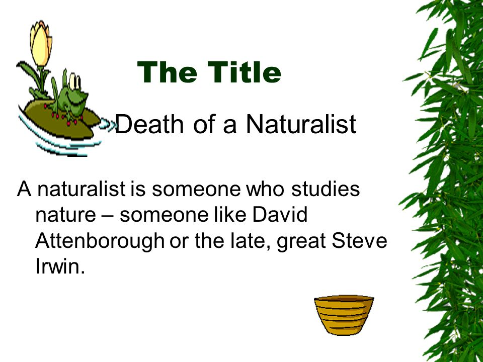The Title Death of a Naturalist A naturalist is someone who studies nature – someone like David Attenborough or the late, great Steve Irwin.