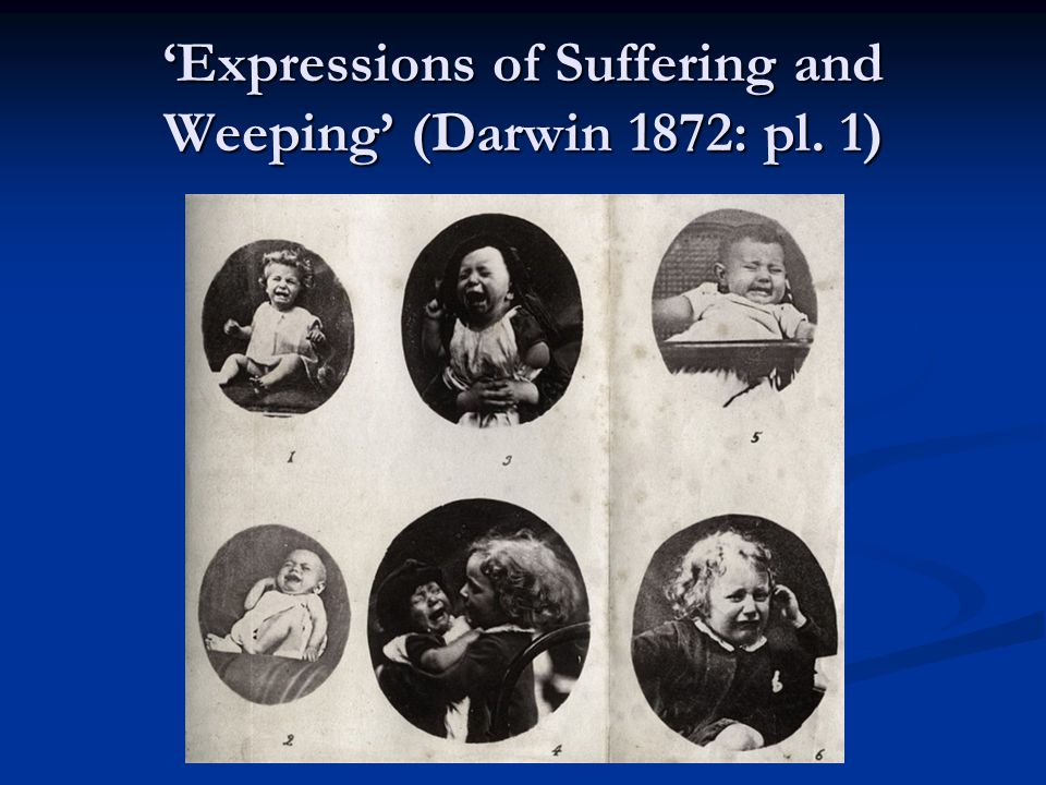 'Expressions of Suffering and Weeping' (Darwin 1872: pl. 1)