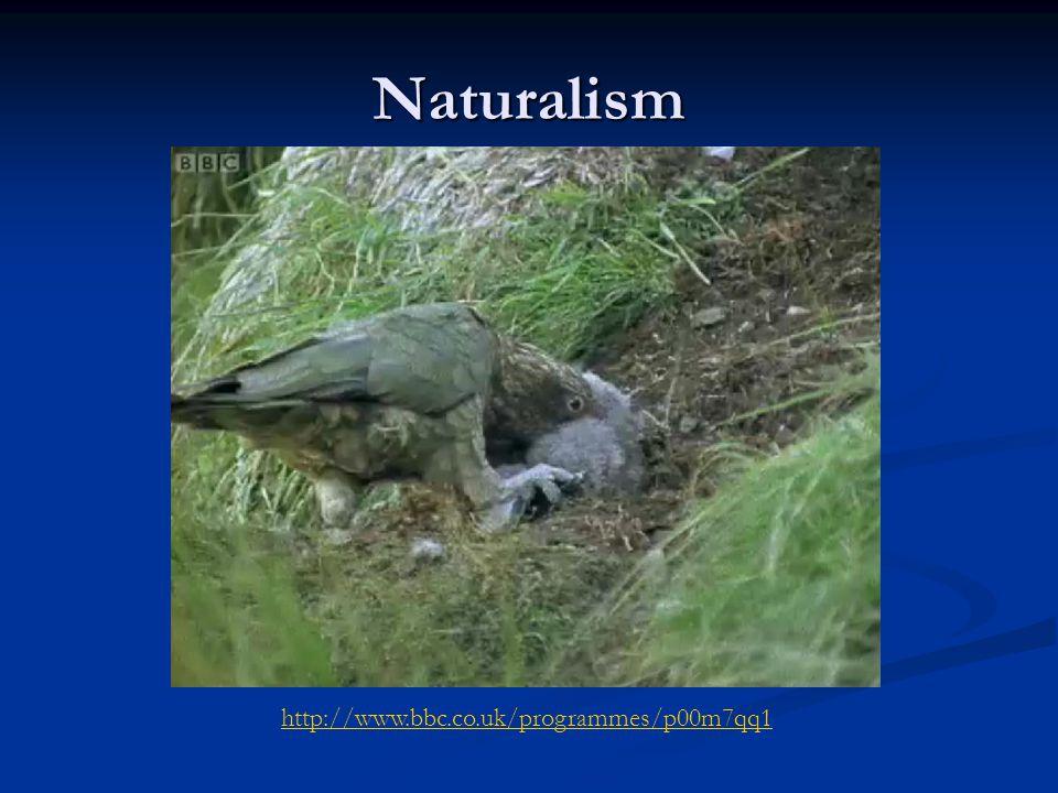 Naturalism http://www.bbc.co.uk/programmes/p00m7qq1