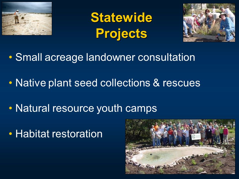 Small acreage landowner consultation Native plant seed collections & rescues Natural resource youth camps Habitat restoration Statewide Projects