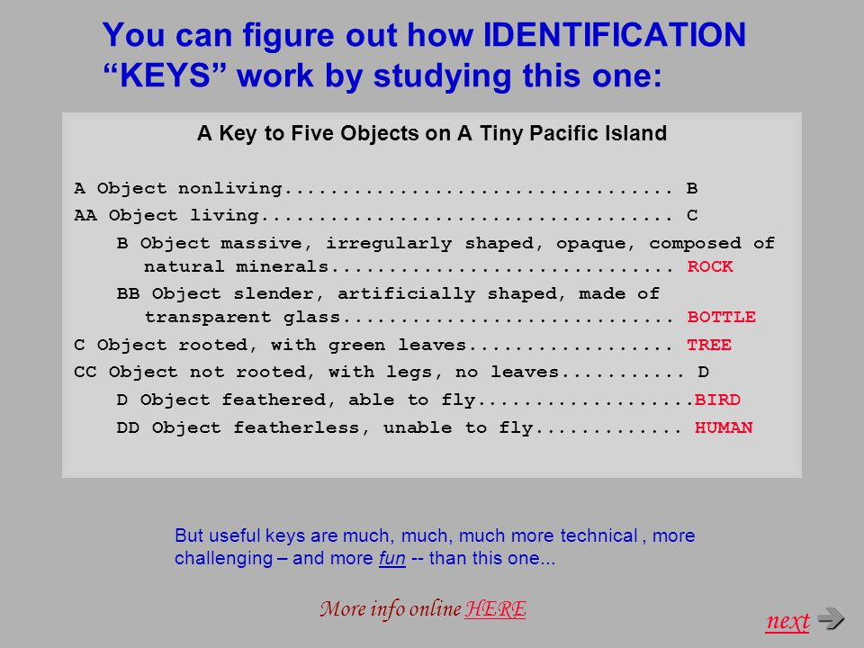 You can figure out how IDENTIFICATION KEYS work by studying this one: A Key to Five Objects on A Tiny Pacific Island A Object nonliving..................................