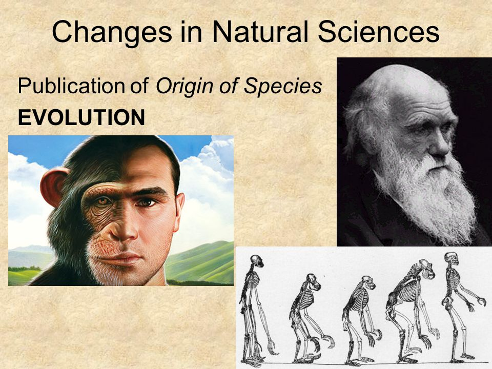 Rise of Naturalism Writers now show concern with human character Characters are less free , less self- determined Heredity became a determinant of character Evolution also provided writers with new metaphors with which to compare literature to social environment