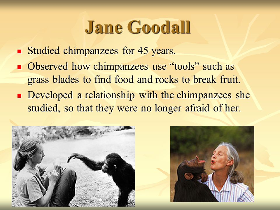 Jane Goodall Studied chimpanzees for 45 years. Studied chimpanzees for 45 years.