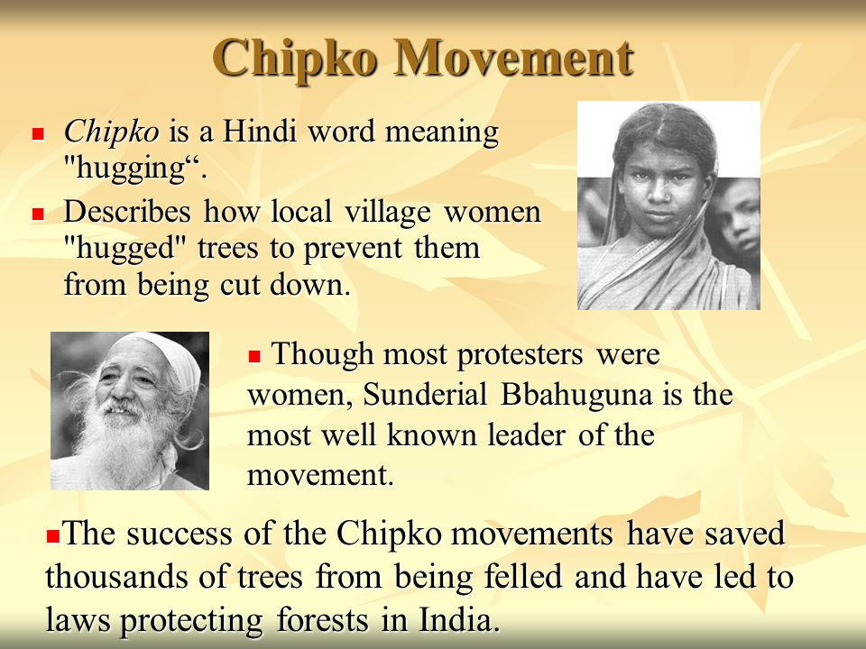 Chipko Movement Chipko is a Hindi word meaning hugging .