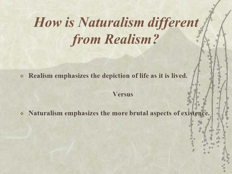 What exactly is Naturalism.