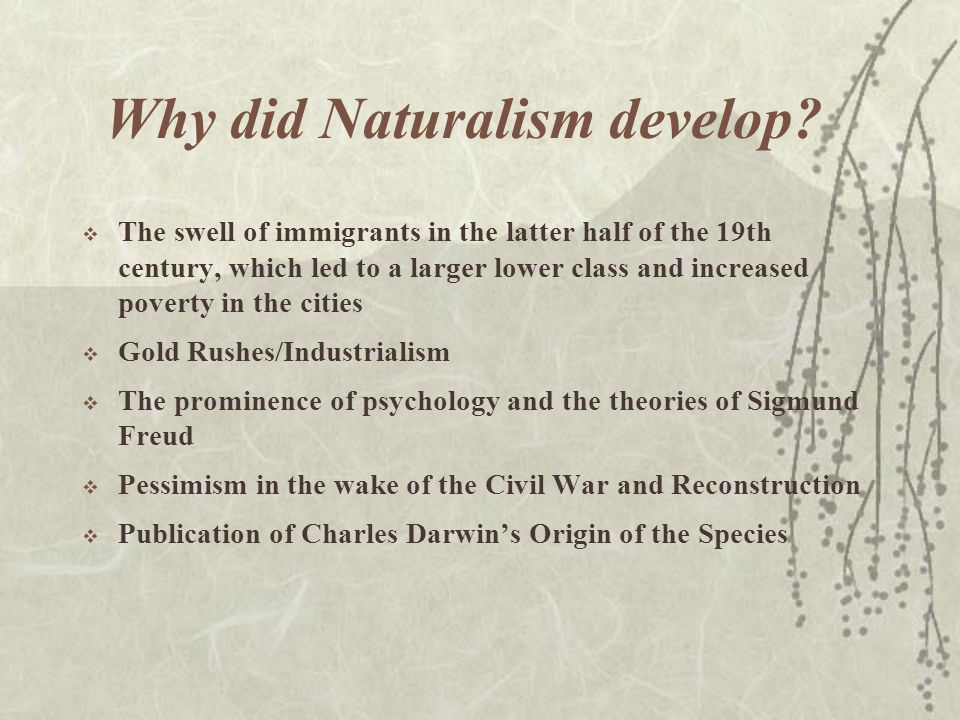What are the characteristics of Naturalism.