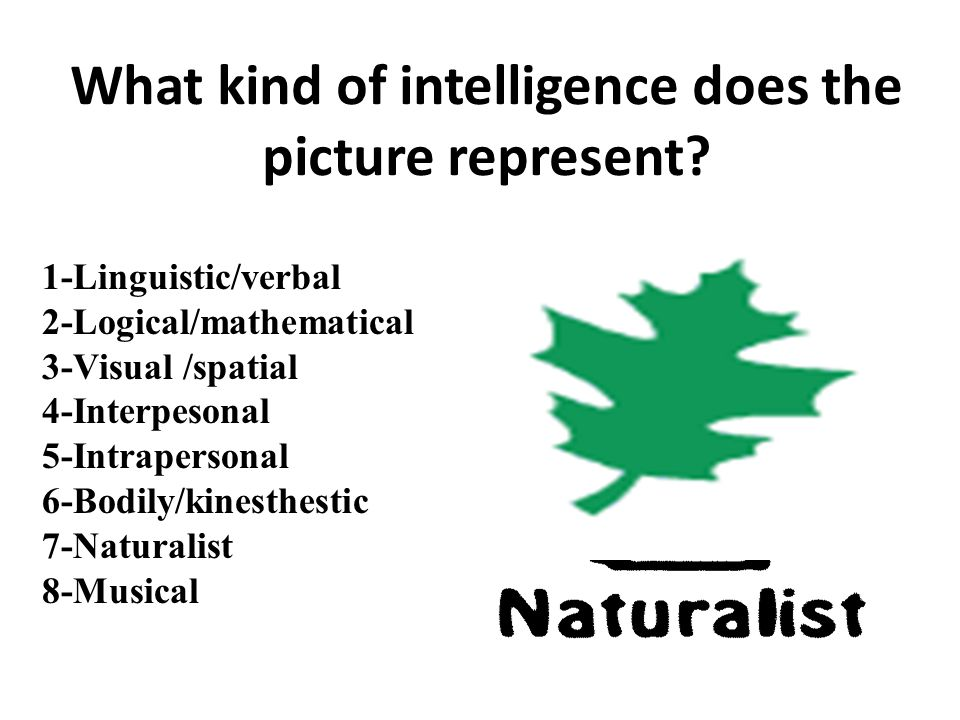 1-Linguistic/verbal 2-Logical/mathematical 3-Visual /spatial 4-Interpesonal 5-Intrapersonal 6-Bodily/kinesthestic 7-Naturalist 8-Musical What kind of intelligence does the picture represent