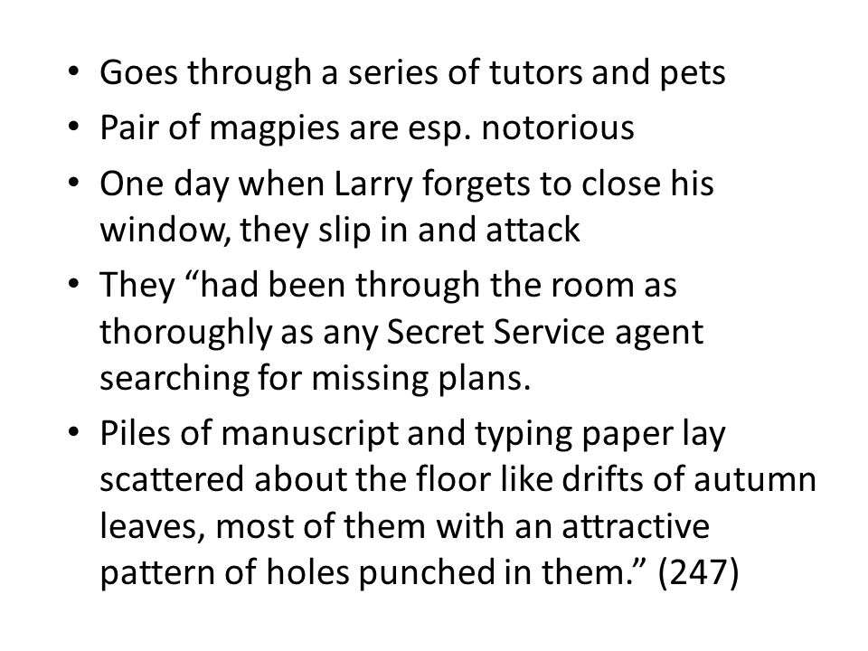 Goes through a series of tutors and pets Pair of magpies are esp.