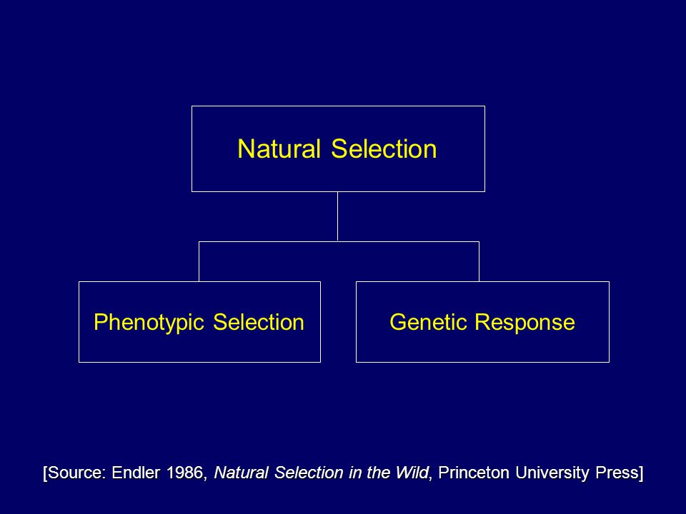 Phenotypic SelectionGenetic Response Natural Selection [Source: Endler 1986, Natural Selection in the Wild, Princeton University Press]