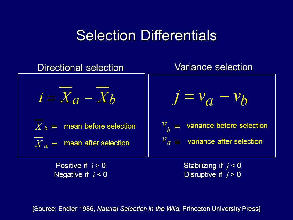 Selection Differentials Directional selection Stabilizing if j < 0 Disruptive if j > 0 Variance selection variance after selection variance before selection Positive if i > 0 Negative if i < 0 [Source: Endler 1986, Natural Selection in the Wild, Princeton University Press] mean before selection mean after selection