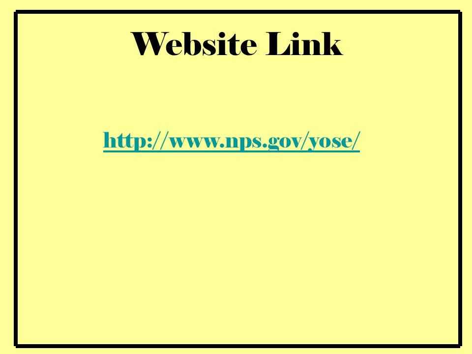 http://www.nps.gov/yose/ Website Link