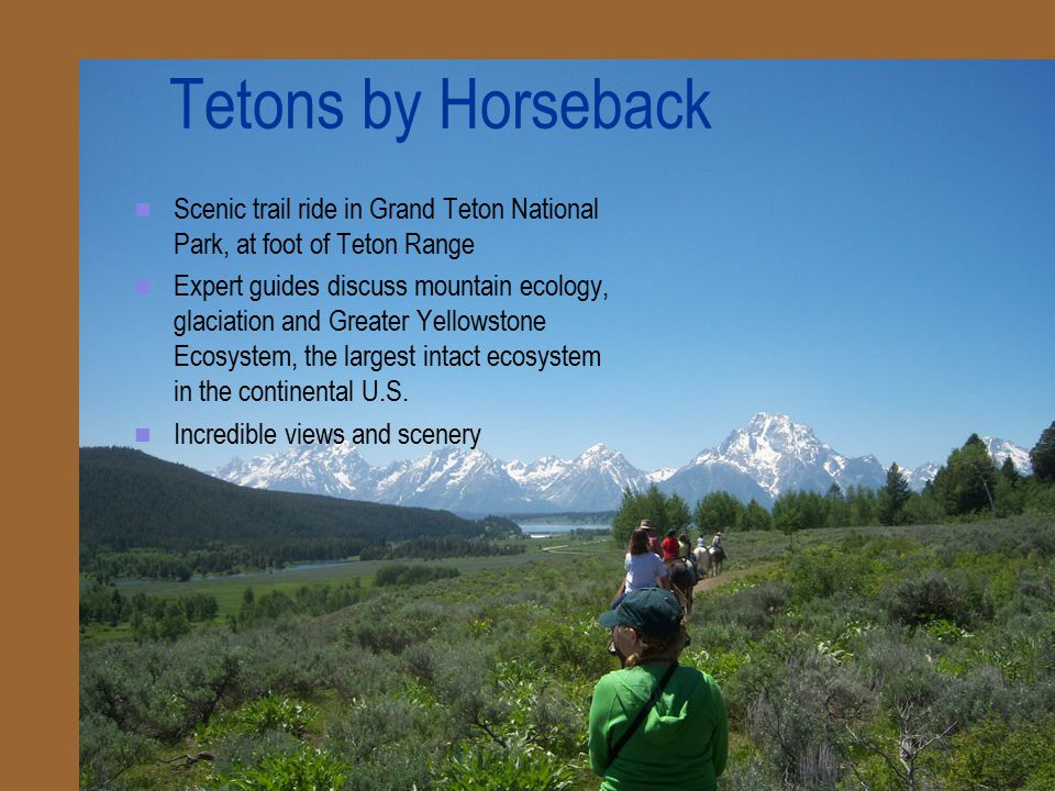 Tetons by Horseback Scenic trail ride in Grand Teton National Park, at foot of Teton Range Expert guides discuss mountain ecology, glaciation and Greater Yellowstone Ecosystem, the largest intact ecosystem in the continental U.S.