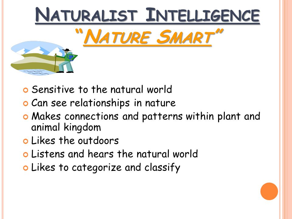 Sensitive to the natural world Can see relationships in nature Makes connections and patterns within plant and animal kingdom Likes the outdoors Listens and hears the natural world Likes to categorize and classify N ATURALIST I NTELLIGENCE N ATURE S MART