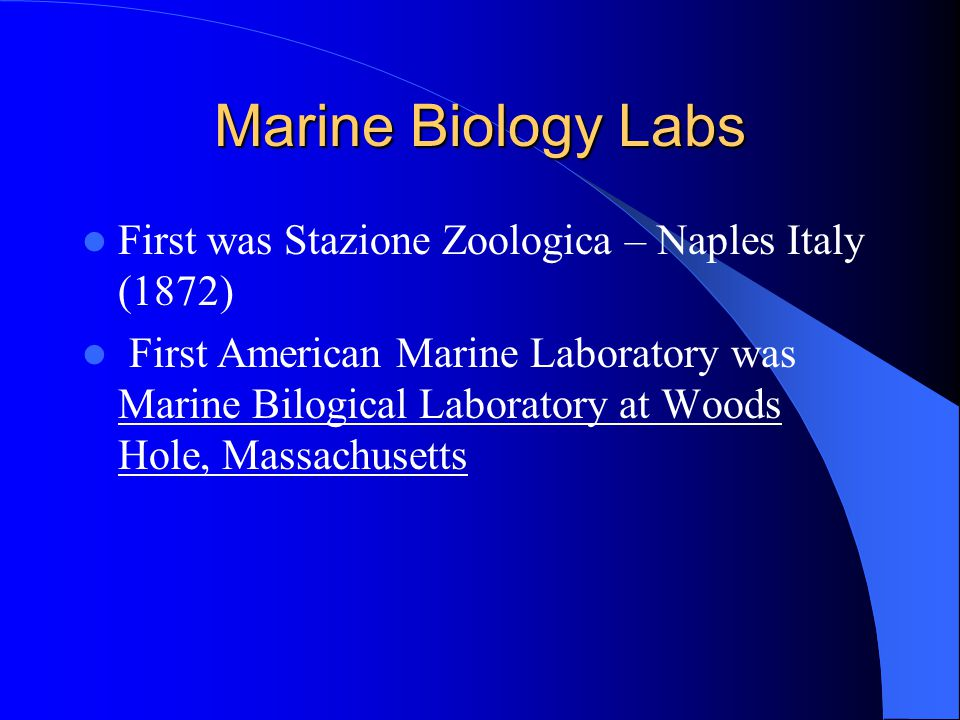 Henri Edwards & Victor Andouin Henri Milne Edwards and Victor Andouin First to make regular visits to the shore to study life Soon labs were established that allowed marine biologists to keep organisms alive and work over longer periods
