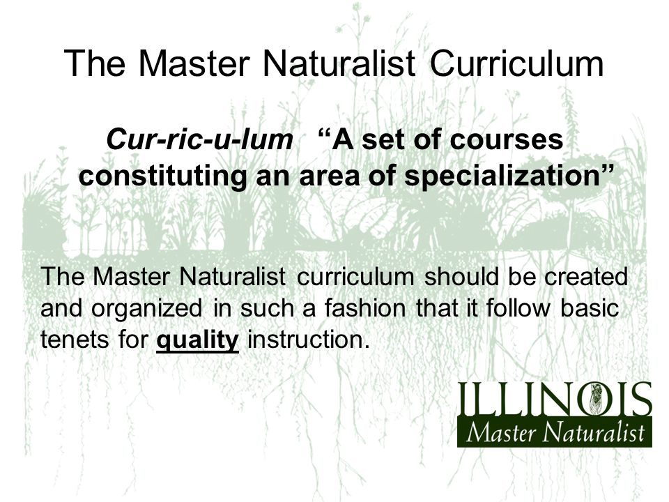 The Master Naturalist Curriculum Cur-ric-u-lum A set of courses constituting an area of specialization The Master Naturalist curriculum should be created and organized in such a fashion that it follow basic tenets for quality instruction.