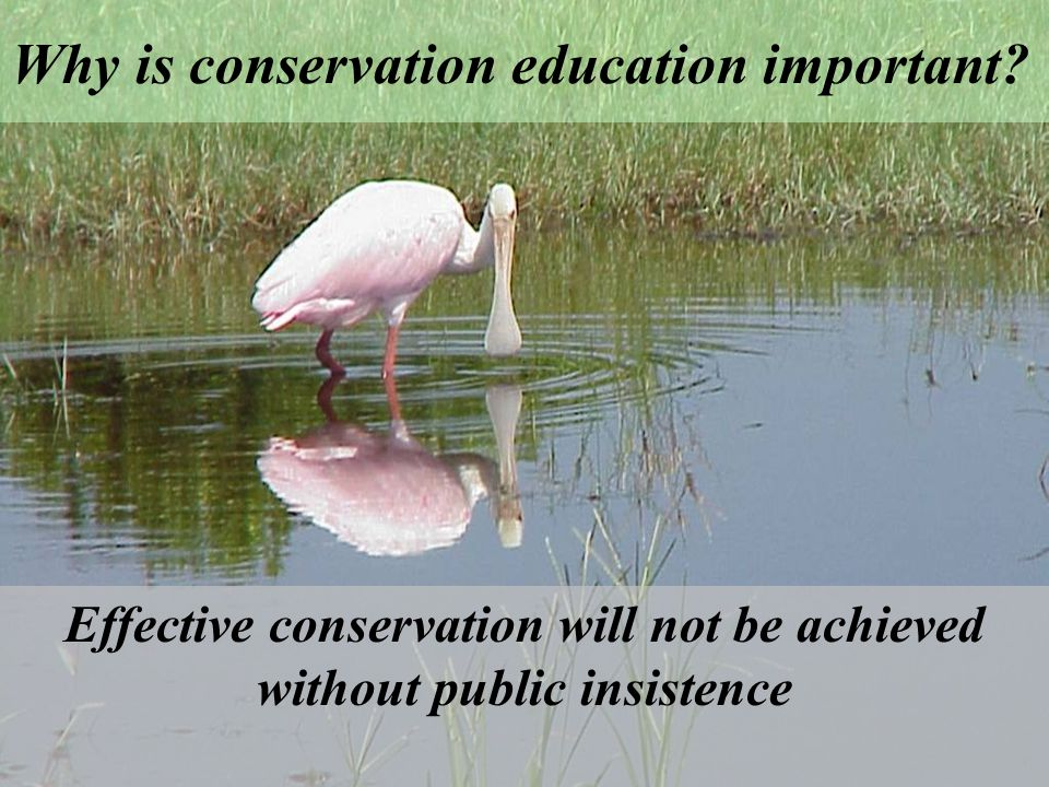 Why is conservation education important.