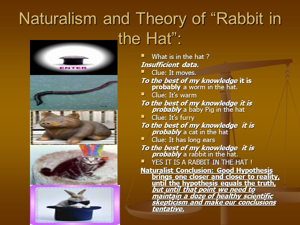 "Naturalism and Theory of ""Rabbit in the Hat"":  What is in the hat ? Insufficient data.  Clue: It moves. To the best of my knowledge it is probably a"