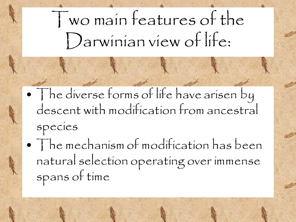 Two main features of the Darwinian view of life: The diverse forms of life have arisen by descent with modification from ancestral species The mechanism of modification has been natural selection operating over immense spans of time
