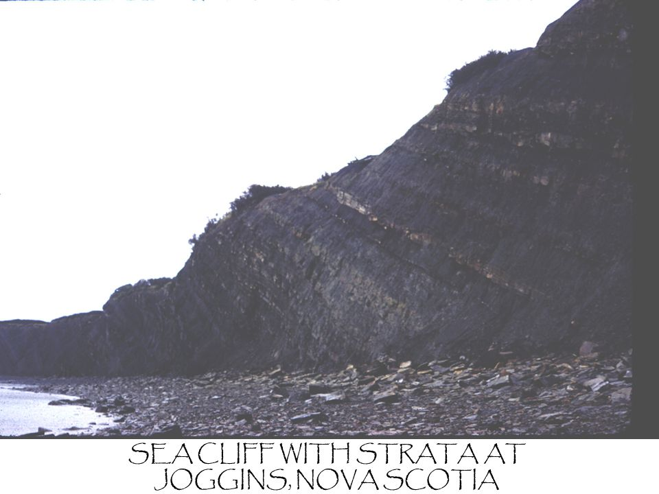 SEA CLIFF WITH STRATA AT JOGGINS, NOVA SCOTIA