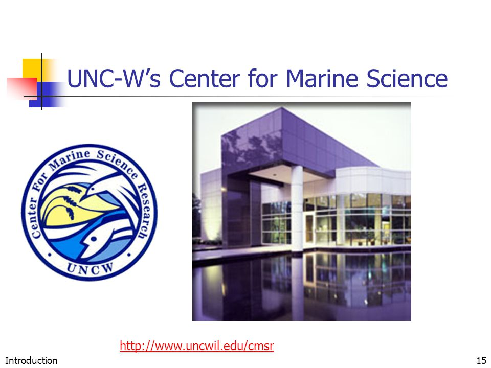 Introduction15 UNC-W's Center for Marine Science http://www.uncwil.edu/cmsr