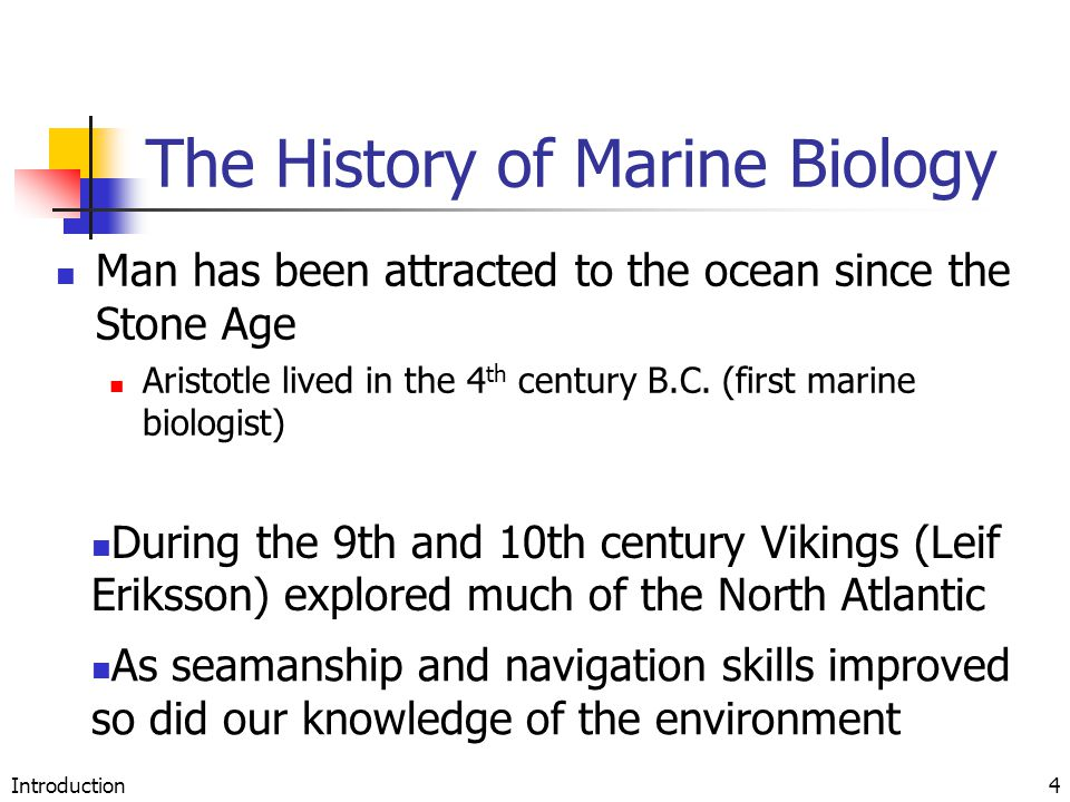 Introduction4 The History of Marine Biology Man has been attracted to the ocean since the Stone Age Aristotle lived in the 4 th century B.C. (first ma