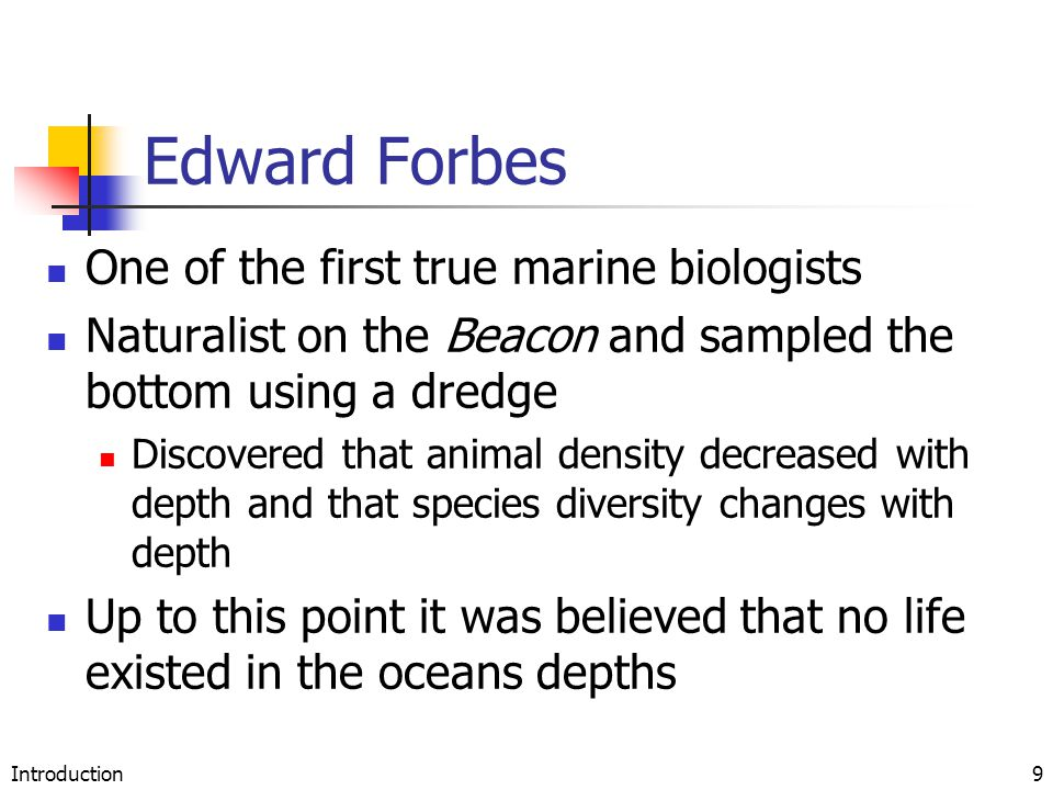 Introduction9 Edward Forbes One of the first true marine biologists Naturalist on the Beacon and sampled the bottom using a dredge Discovered that ani