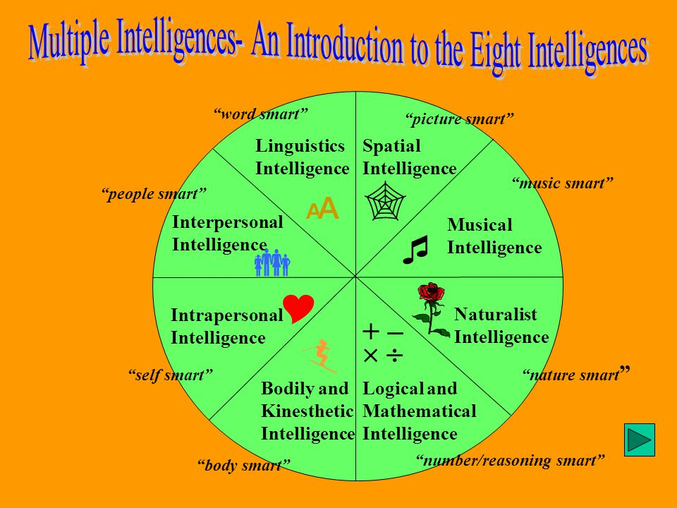 Linguistics Intelligence Logical and Mathematical Intelligence Spatial Intelligence Musical Intelligence Interpersonal Intelligence Intrapersonal Intelligence Naturalist Intelligence       +    Bodily and Kinesthetic Intelligence word smart picture smart music smart nature smart number/reasoning smart body smart self smart people smart