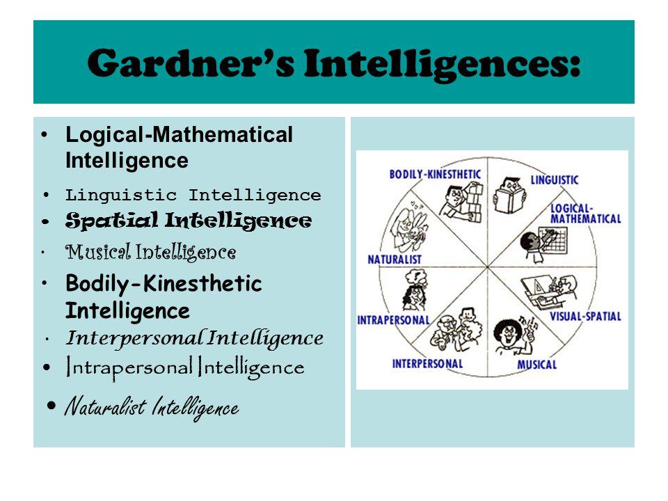 Gardner's Intelligences: Logical-Mathematical Intelligence Linguistic Intelligence Spatial Intelligence Musical Intelligence Bodily-Kinesthetic Intelligence Interpersonal Intelligence Intrapersonal Intelligence Naturalist Intelligence