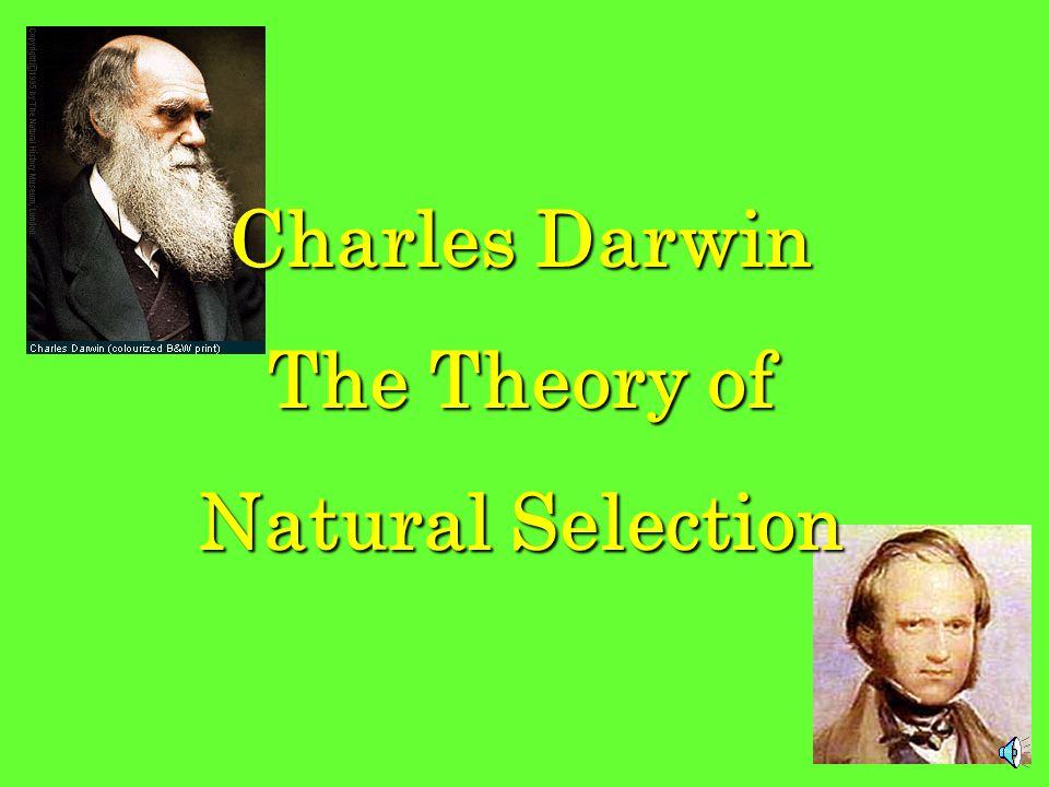 Charles Darwin The Theory of Natural Selection