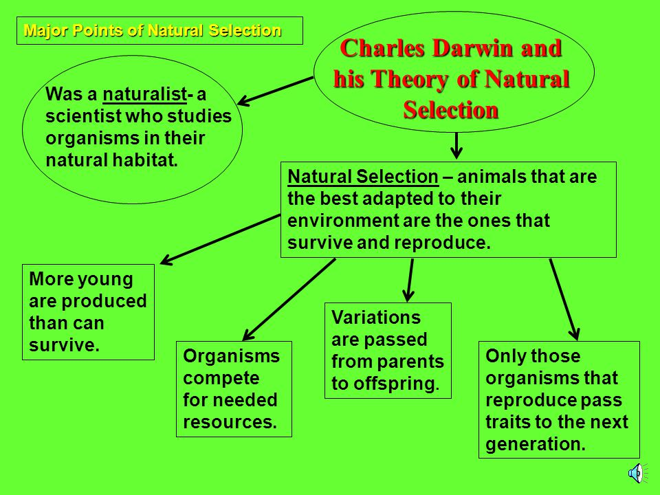 What is Natural Selection? Those organisms that are best adapted for survival are the ones that are chosen for reproduction. Only those organisms that