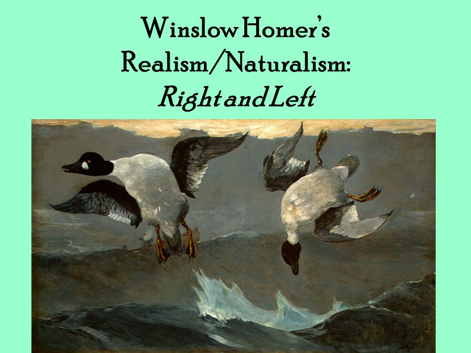 Winslow Homer's Realism/Naturalism: Right and Left