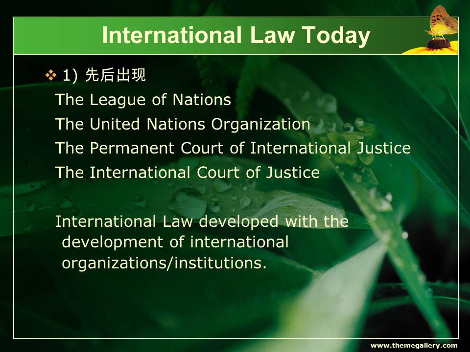 www.themegallery.com International Law Today  2) some principles ·non-intervention in internal affairs ·territorial integrity ·nonuse of force ·equality of voting in the UN General Assembly  3) today international law has not only expanded its jurisdictional scope to embrace newly established states, but also extended itself to include individuals, groups, multinational corporations and international organizations within its jurisdiction.