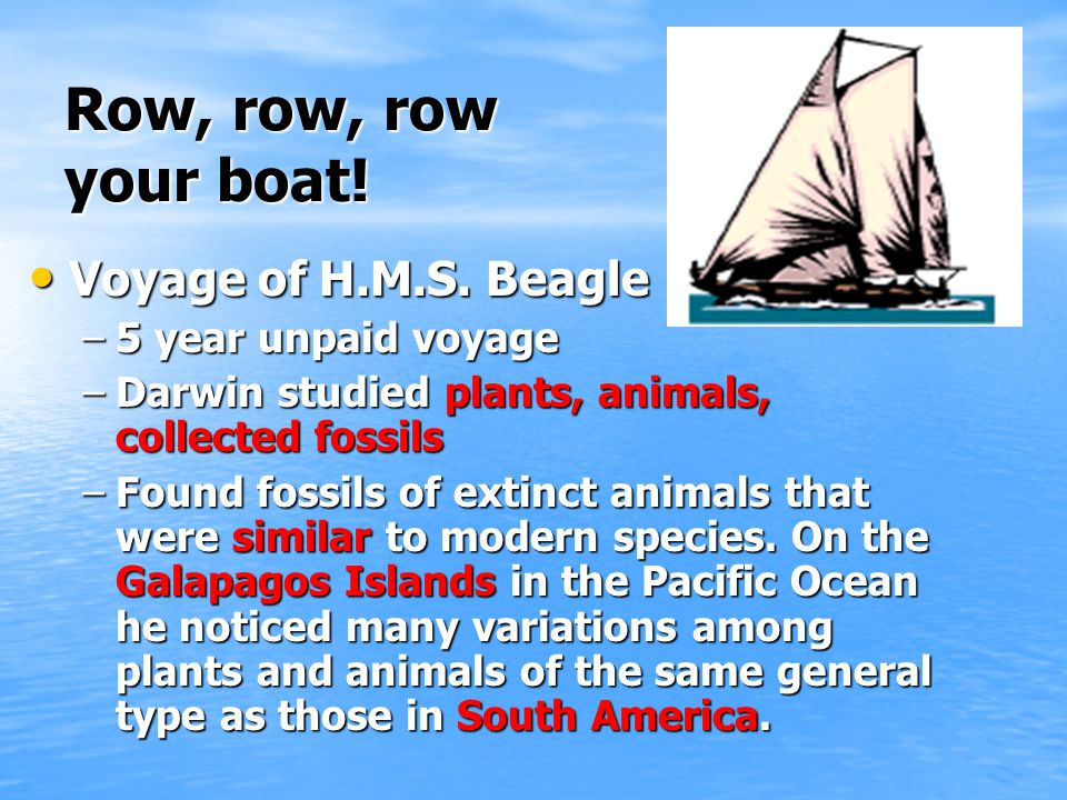 Row, row, row your boat.Voyage of H.M.S. Beagle Voyage of H.M.S.
