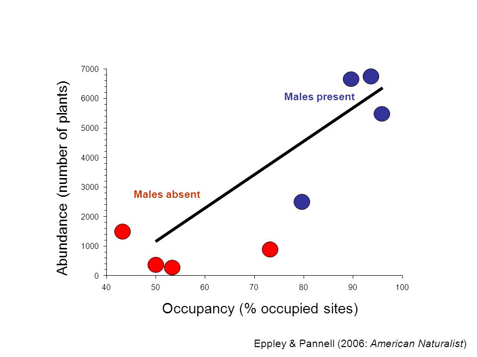 Occupancy (% occupied sites) 405060708090100 Abundance (number of plants) 0 1000 2000 3000 4000 5000 6000 7000 Males absent Males present Eppley & Pannell (2006: American Naturalist)