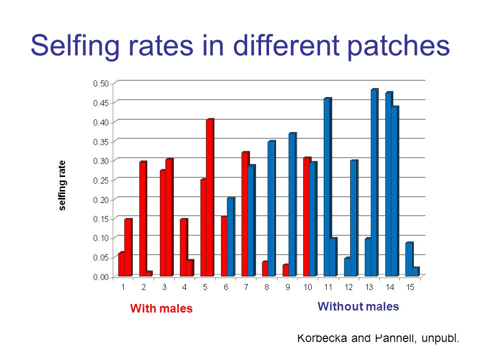 Korbecka and Pannell, unpubl. Selfing rates in different patches With males Without males