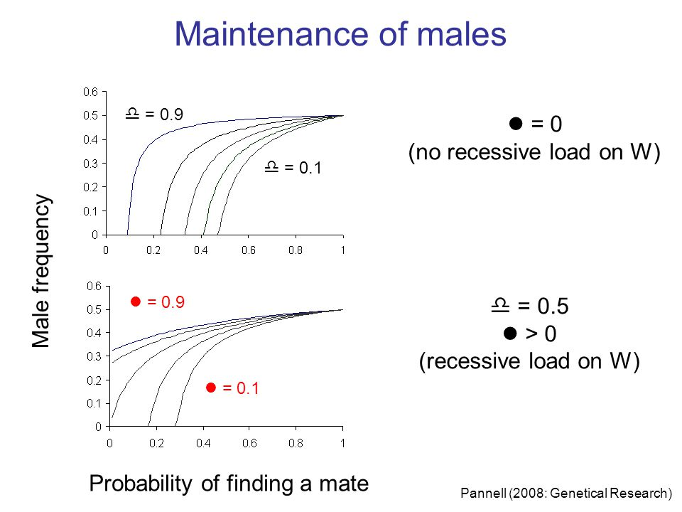 Male frequency Probability of finding a mate  = 0.9 = 0.9 = 0.1  = 0.1 l = 0 (no recessive load on W)  = 0.9  = 0.5 l > 0 (recessive load on W) Maintenance of males Pannell (2008: Genetical Research)