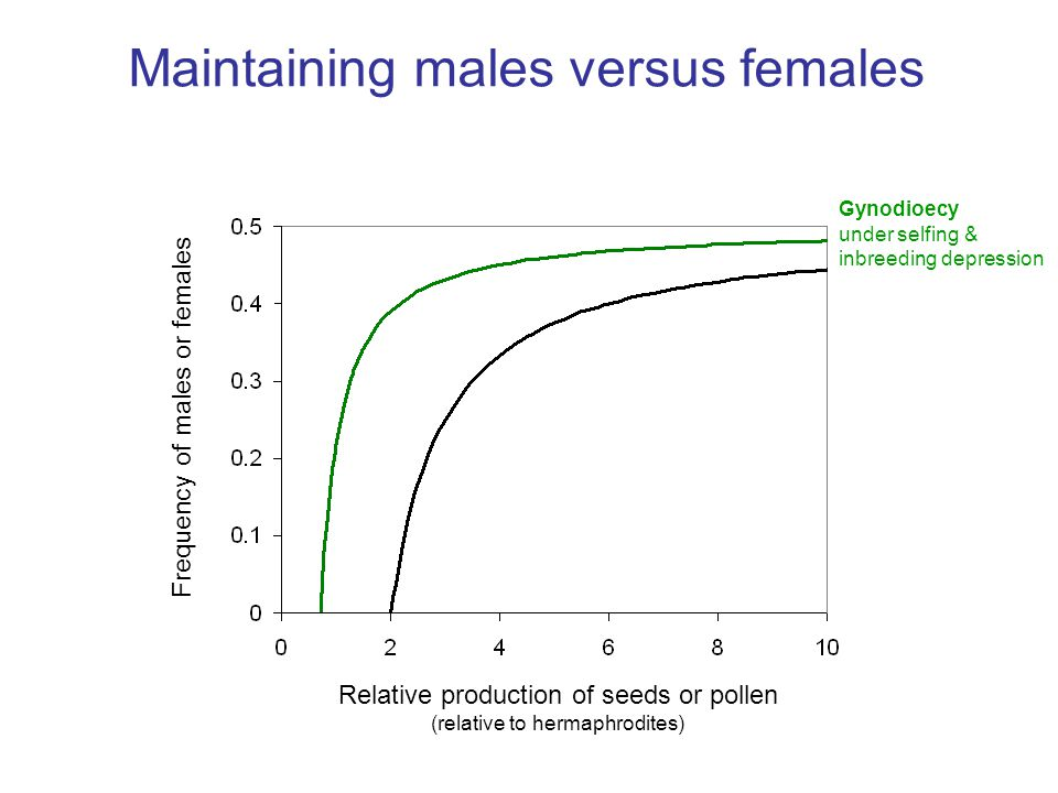 Relative production of seeds or pollen (relative to hermaphrodites) Frequency of males or females Maintaining males versus females Gynodioecy under selfing & inbreeding depression