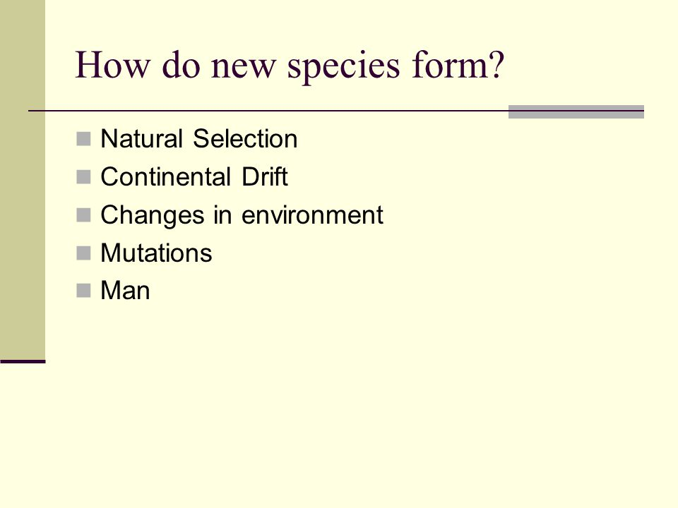 Factors that affect Natural Selection: Survival to reproduce: Only those individuals that are better suited to the environment will survive and reproduce ( Survival of the fittest ).