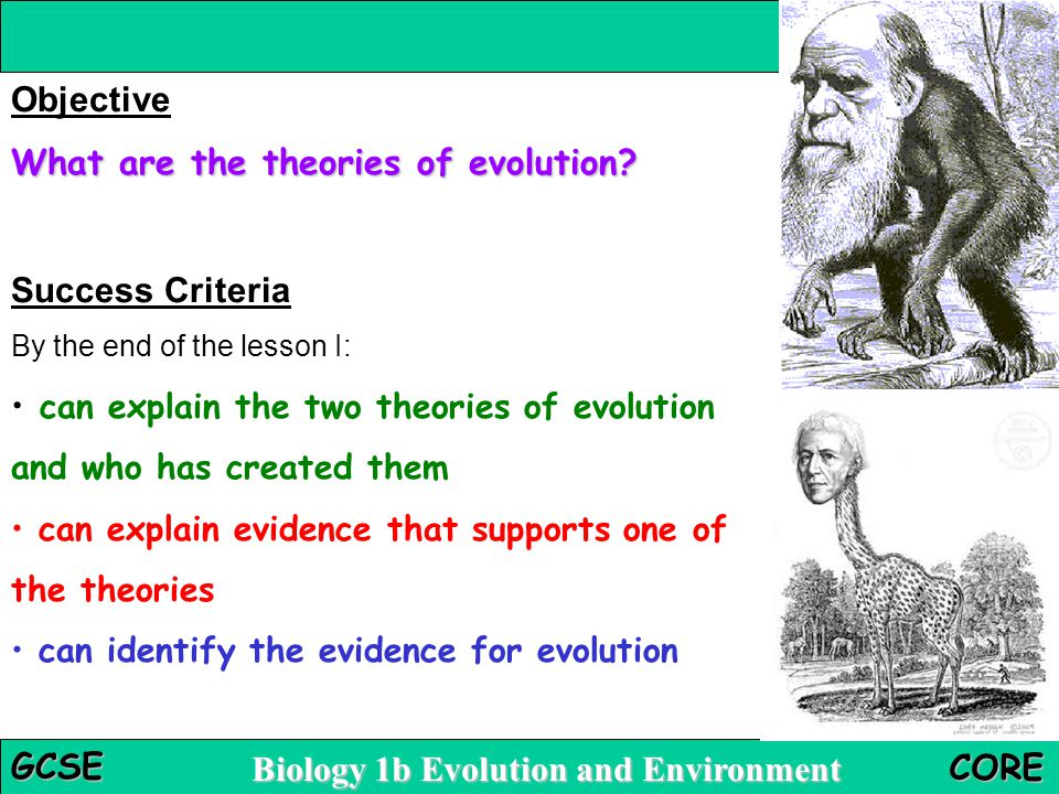 Biology 1b Evolution and Environment GCSE CORE Objective What are the theories of evolution.